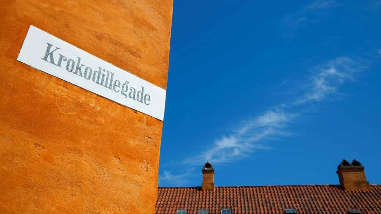 Hvad er de mest almindelige danske vejnavne?